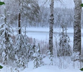 Öppettider Jul- & Nyårsveckorna